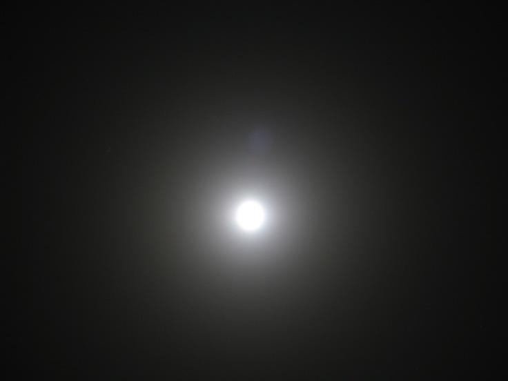 moon light © makanartist