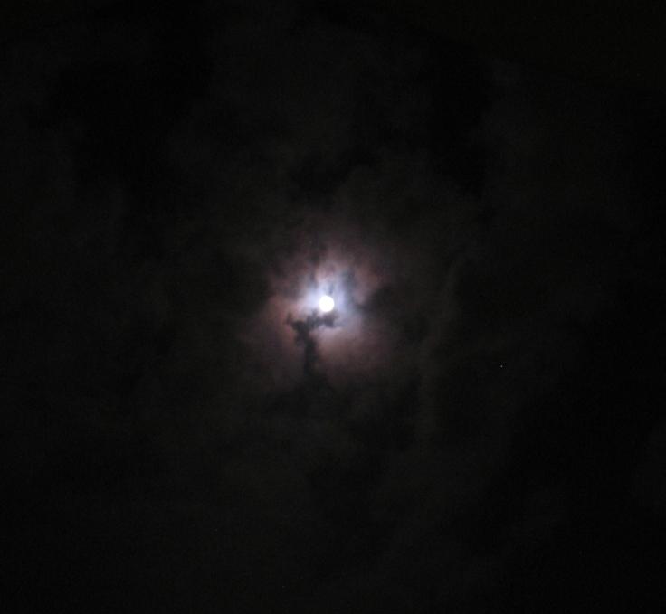 moon_light_24