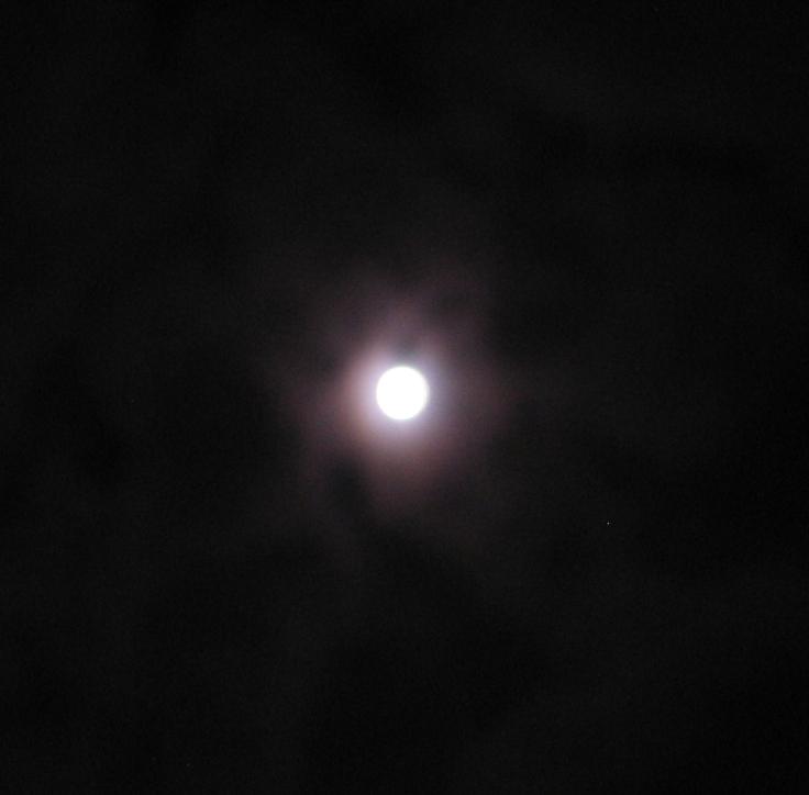 moon_light_28