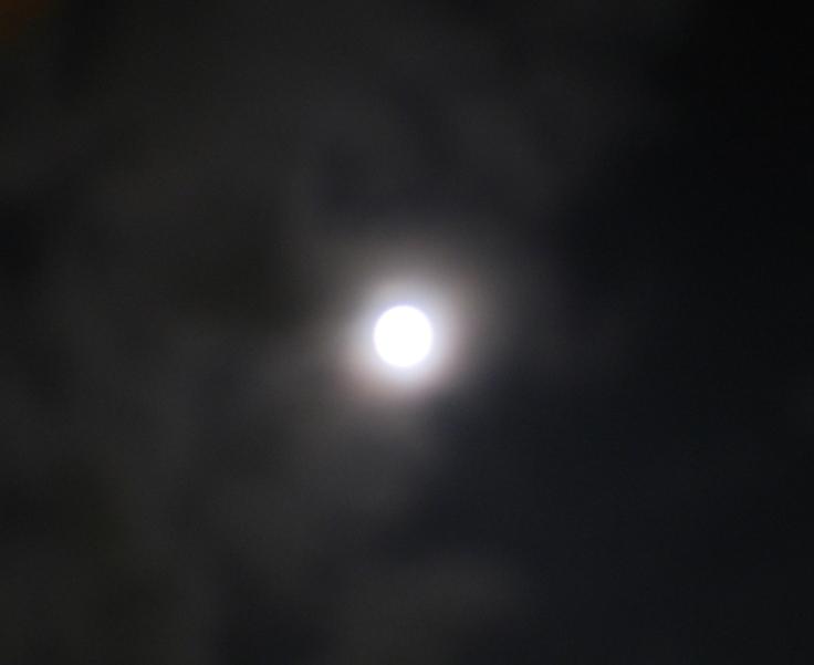 moon_light_29