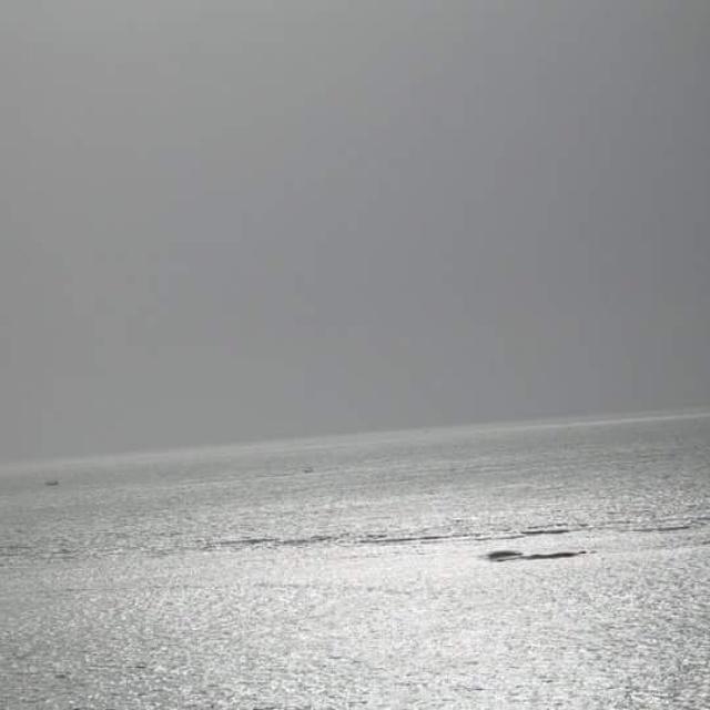 silver_light