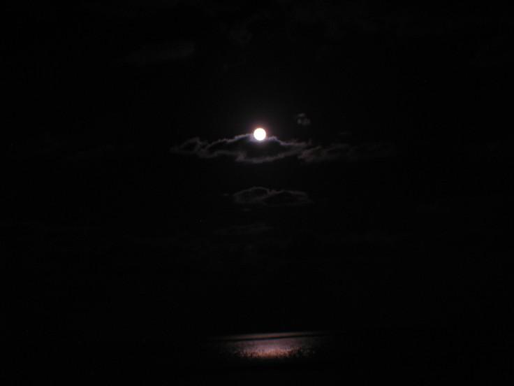 moon_swing_17