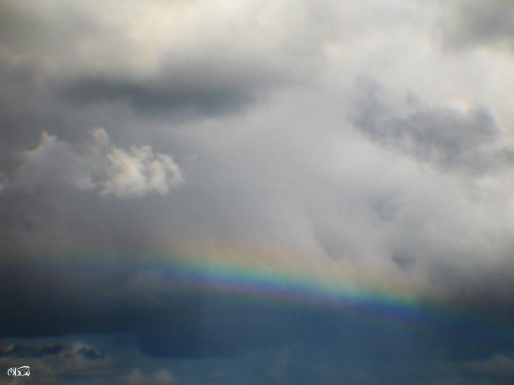 rainbow ~ seeker_02