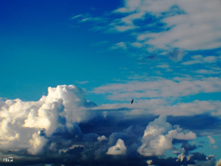 secret_sky